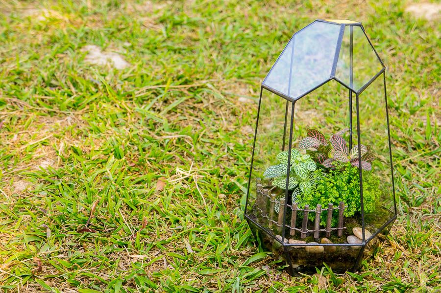 Private Garden Terrarium